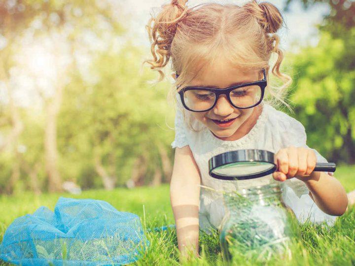 Juguetes y juegos para estimular la curiosidad y la observación.